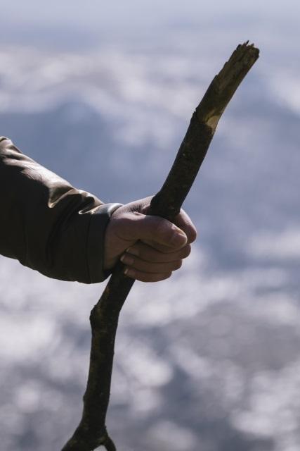 【日本とイスラエル】エゼキエルの二本の杖