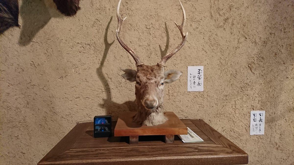 耳の裂けた鹿